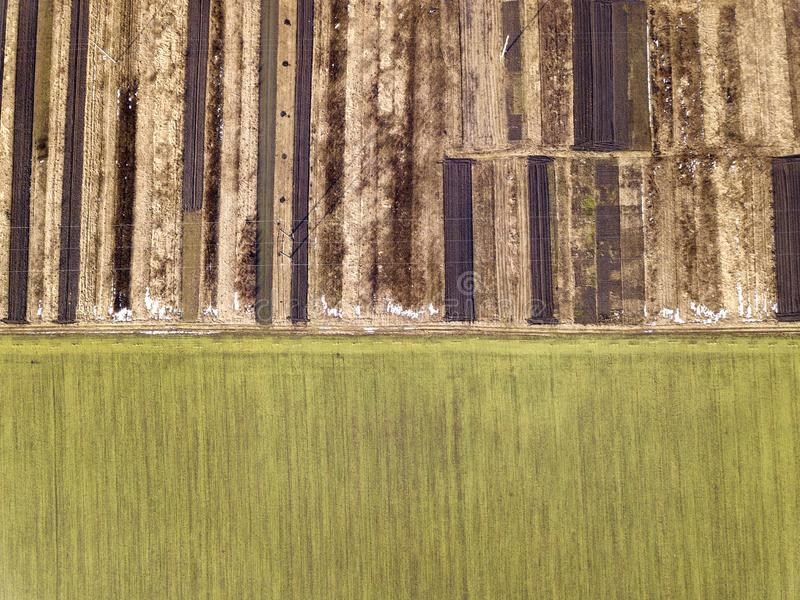 Γεωργικό τοπίο από τον αέρα Ευθύς στενός επίγειος δρόμος μεταξύ των ηλιόλουστων πράσινων, ξηρών και καφετιών οργωμένων τομέων στοκ εικόνα με δικαίωμα ελεύθερης χρήσης