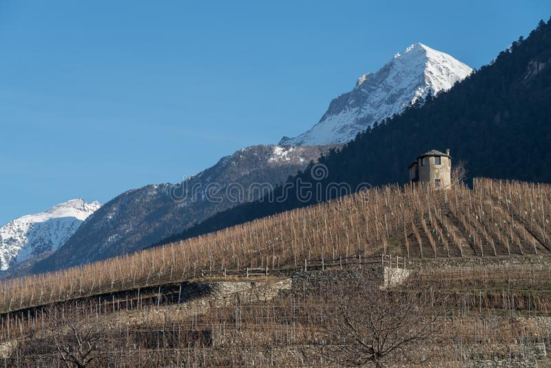 Γεωργικό τοπίο στους λόφους της κοιλάδας Aosta, Ιταλία στοκ εικόνες