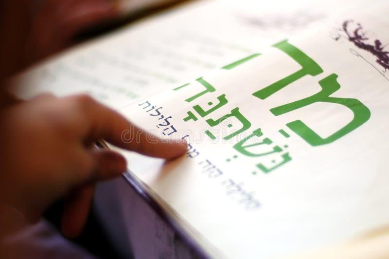γεύμα εορτασμών passover στοκ εικόνα με δικαίωμα ελεύθερης χρήσης