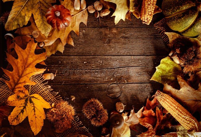 Γεύμα ημέρας των ευχαριστιών στοκ φωτογραφίες με δικαίωμα ελεύθερης χρήσης