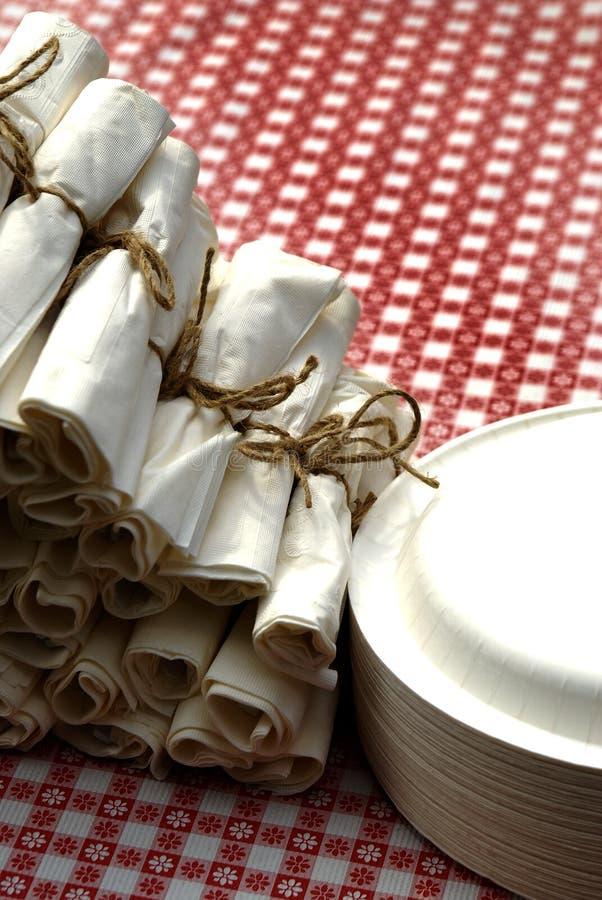 Γεύμα ρύθμισης θέσεων πικ-νίκ επιτραπέζια πετσέτες και στοκ φωτογραφίες
