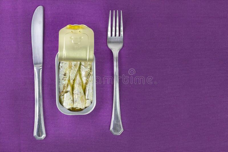 Γεύμα σαρδελλών στοκ φωτογραφία
