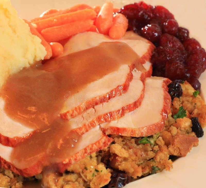 γεύμα Τουρκία στοκ εικόνες με δικαίωμα ελεύθερης χρήσης