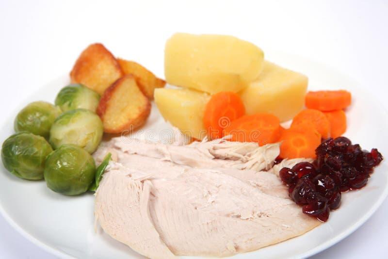 γεύμα Χριστουγέννων οριζόντιο στοκ φωτογραφίες