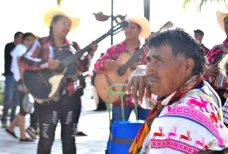Γηγενή μεξικάνικα άτομα που εγκαθιστούν στην αποβάθρα στοκ εικόνα με δικαίωμα ελεύθερης χρήσης