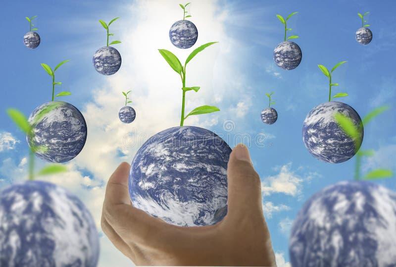 Γη, σε μια χούφτα, με τα δέντρα που αυξάνονται στην κορυφή, με το φωτεινό ουρανό ως υπόβαθρο και βροχή ελεύθερη απεικόνιση δικαιώματος