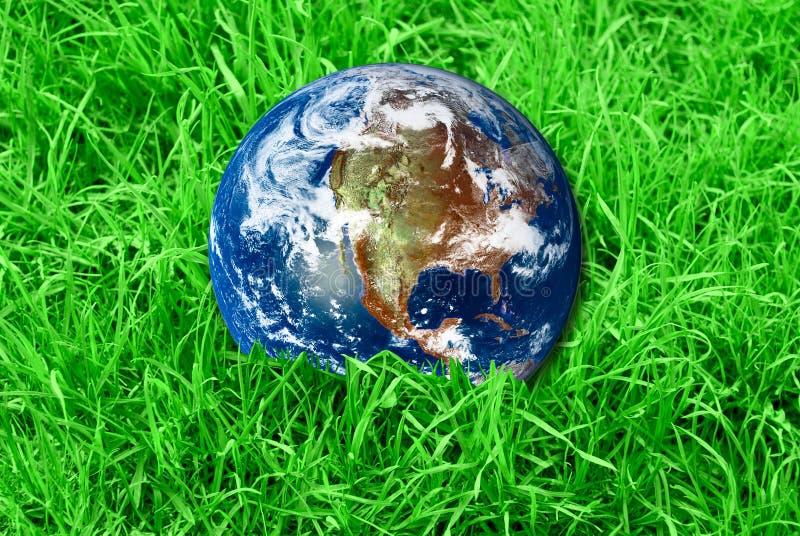 Γη στην πράσινη χλόη στοκ εικόνες