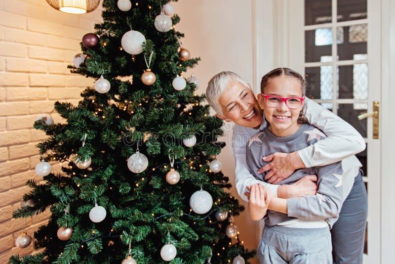 Γιαγιά και εγγονή που διακοσμούν ένα χριστουγεννιάτικο δέντρο στοκ εικόνα με δικαίωμα ελεύθερης χρήσης