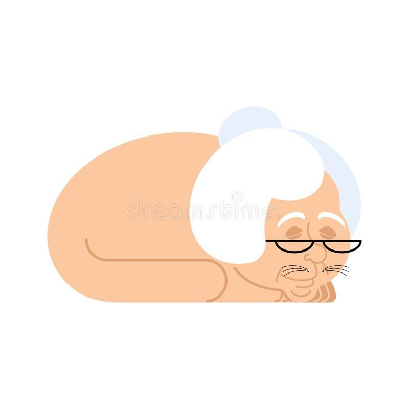 Γιαγιά με το σώμα γατών Γάτα με το κεφάλι grandma κατοικίδιο ζώο στο paralle απεικόνιση αποθεμάτων