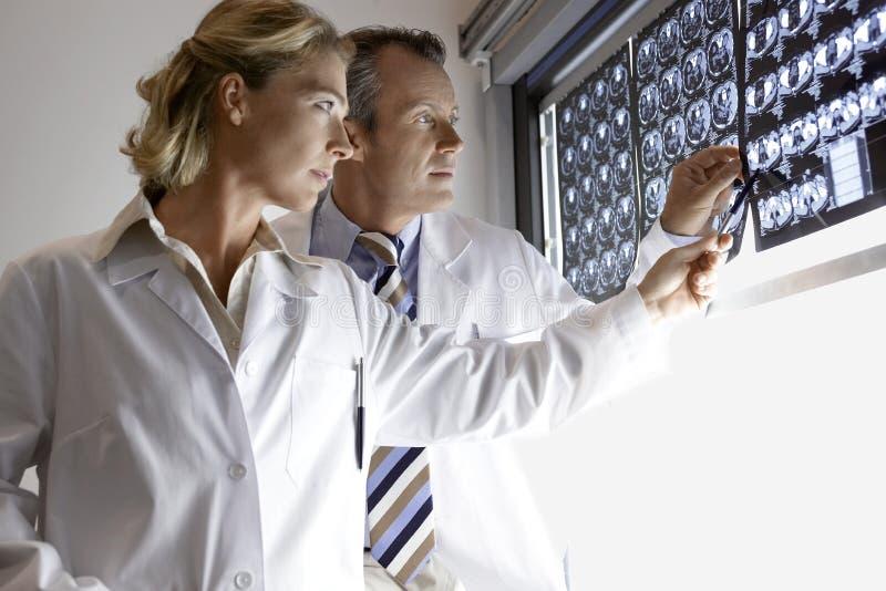 Γιατροί που εξετάζουν τις ανιχνεύσεις εγκεφάλου στοκ εικόνα με δικαίωμα ελεύθερης χρήσης