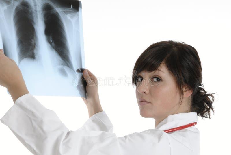 Γιατρός ακτίνας X στοκ εικόνες με δικαίωμα ελεύθερης χρήσης