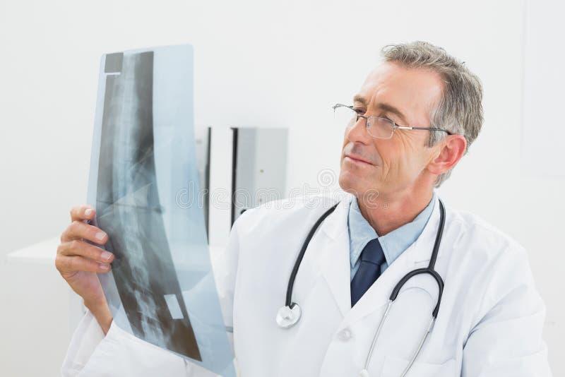 Γιατρός που εξετάζει την των ακτίνων X εικόνα της σπονδυλικής στήλης στην αρχή στοκ φωτογραφία με δικαίωμα ελεύθερης χρήσης