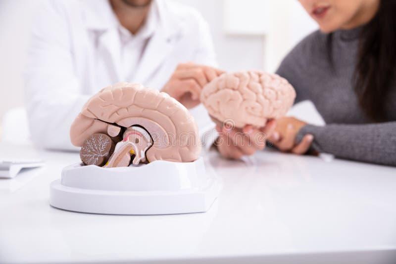 Γιατρός που εξηγεί τις λεπτομέρειες του ανθρώπινου εγκεφάλου στη γυναίκα στοκ εικόνες με δικαίωμα ελεύθερης χρήσης