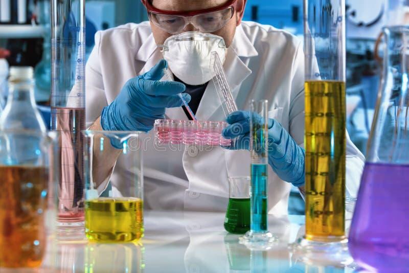 Γιατρός που εργάζεται με το πιάτο πολυ καλά για την κυτταροκαλλιέργεια στο ερευνητικό εργαστήριο στοκ φωτογραφία με δικαίωμα ελεύθερης χρήσης
