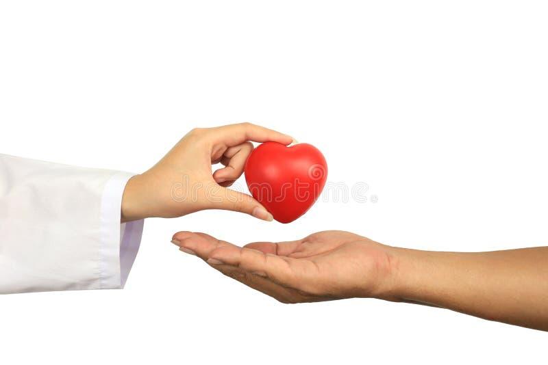 Γιατρός που κρατά μια κόκκινη σφαίρα καρδιών στο ανώτερο άτομο στο άσπρες υπόβαθρο, την ιατρική και την έννοια υγειονομικής περίθ στοκ φωτογραφία