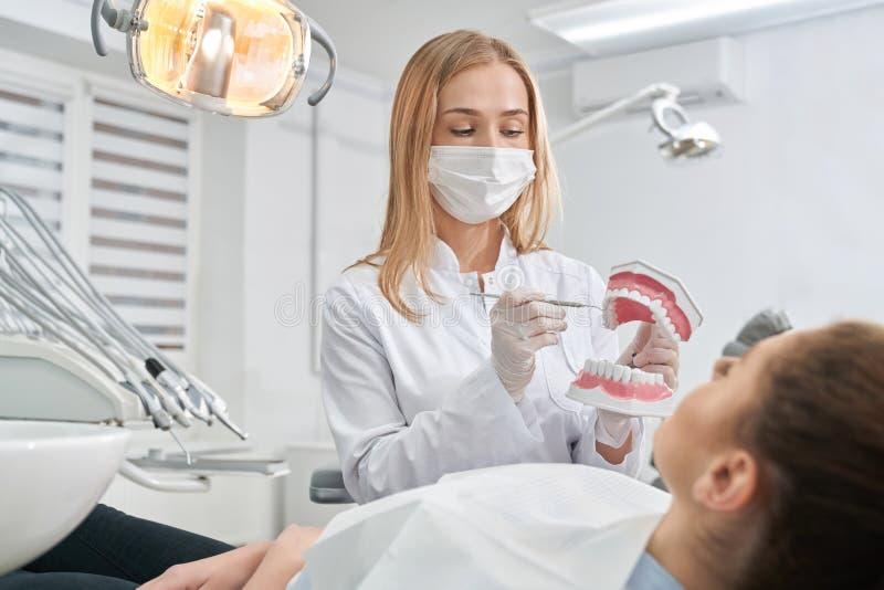 Γιατρός που παρουσιάζει οδοντικό πρότυπο δοντιών στον ασθενή στοκ φωτογραφίες με δικαίωμα ελεύθερης χρήσης