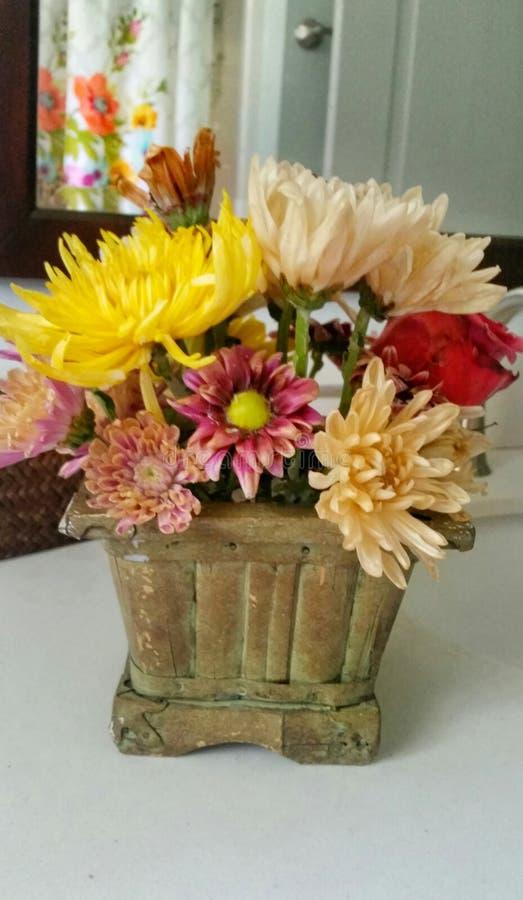Για πάντα λουλούδια στοκ φωτογραφία με δικαίωμα ελεύθερης χρήσης