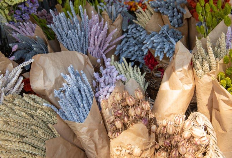 Για την εσωτερική ποικιλία διακοσμήσεων των ζωηρόχρωμων ανθοδεσμών των ξηρών εγκαταστάσεων στον ελληνικό φραγμό λουλουδιών στοκ φωτογραφία με δικαίωμα ελεύθερης χρήσης