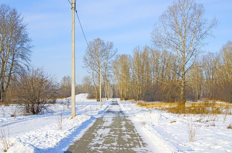Για τους πεζούς δρόμος μέσω του χειμερινού χιονισμένου πάρκου στοκ εικόνα