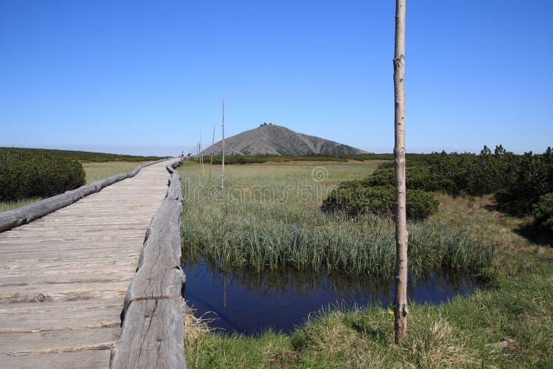 γιγαντιαία τύρφη βουνών ε&lambda στοκ εικόνα