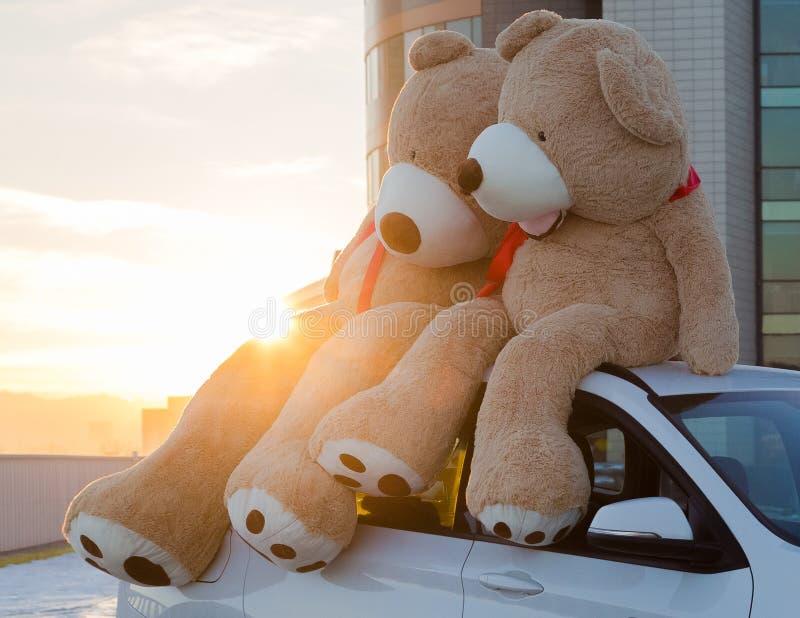 Γιγαντιαίες teddy αρκούδες με τις κόκκινες κορδέλλες που κάθονται πάνω από την κουκούλα αυτοκινήτων υπαίθρια Διάστημα για το κείμ στοκ εικόνες
