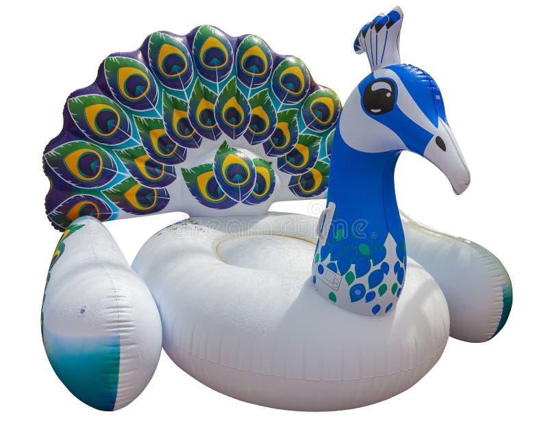 Γιγαντιαίο ζωηρόχρωμο επιπλέον σώμα peacock Διογκώσιμο επιπλέον σώμα στοκ εικόνα με δικαίωμα ελεύθερης χρήσης