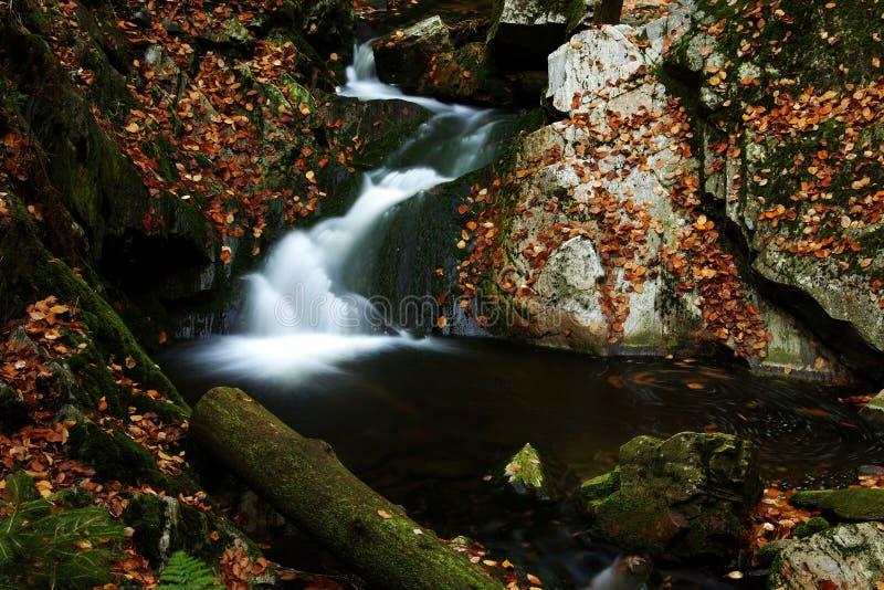 γιγαντιαίο ρεύμα βουνών φθινοπώρου στοκ εικόνα