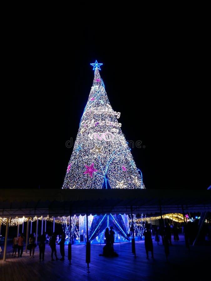 Γιγαντιαίο χριστουγεννιάτικο δέντρο στοκ εικόνες