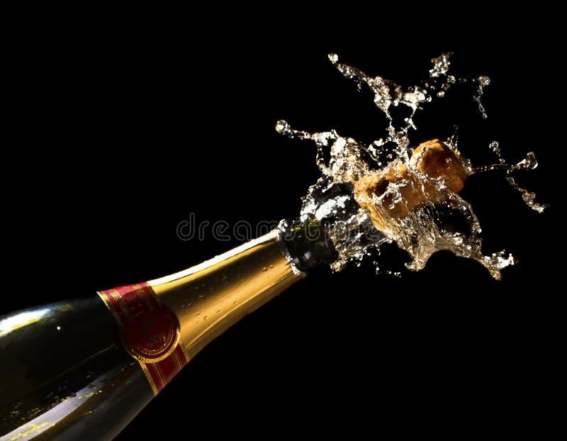 γιορτάστε αφήνει το νέο έτ&omicr στοκ φωτογραφία με δικαίωμα ελεύθερης χρήσης