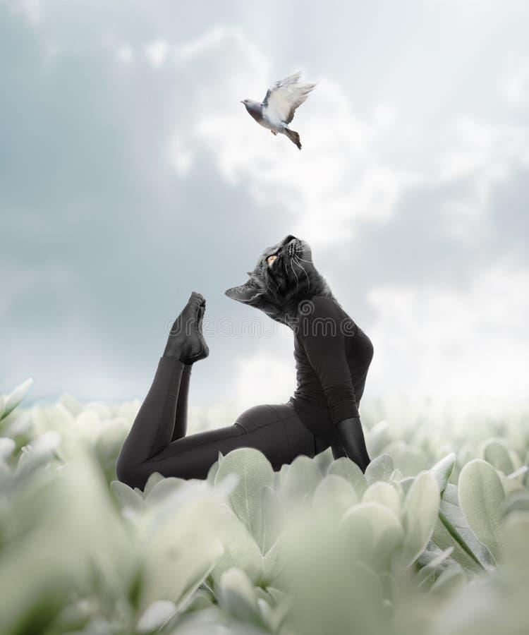 Γιόγκα γατών, μια γυναίκα που συνδέουν με την άγρια εσωτερική δύναμή της και ΛΦ στοκ εικόνες