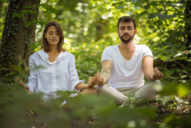 Γιόγκα στη φύση Στόχοι ζεύγους στοκ φωτογραφία με δικαίωμα ελεύθερης χρήσης
