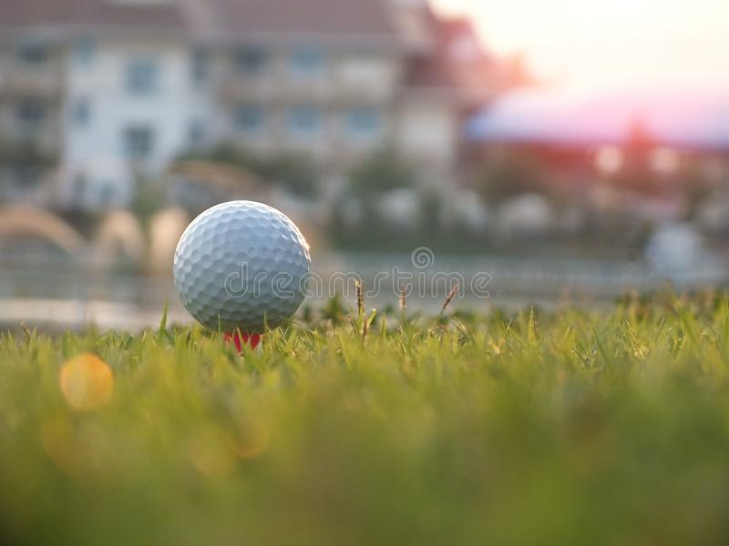 Γκολφ στο κόκκινο γράμμα Τ στον πράσινο χορτοτάπητα στοκ φωτογραφία με δικαίωμα ελεύθερης χρήσης