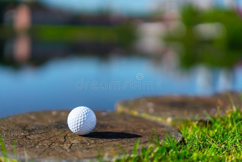 Γκολφ-σφαίρα στοκ φωτογραφίες