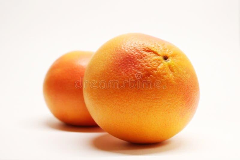 Γκρέιπφρουτ Εσπεριδοειδή Εσπεριδοειδή παραδείσου καρπός χρήσιμος Υποτροπικά φρούτα Λίγων θερμίδων φρούτα διαιτητικά τρόφιμα Συστα στοκ εικόνες
