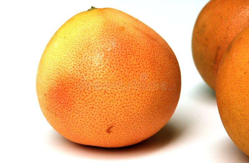 γκρέιπφρουτ στοκ φωτογραφία με δικαίωμα ελεύθερης χρήσης