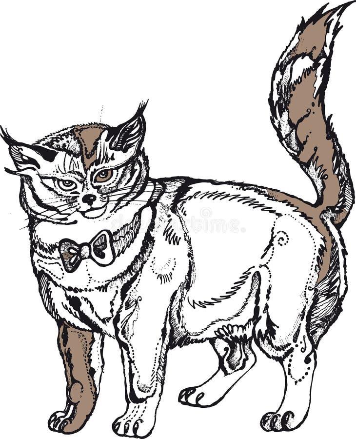 Γκρίζα μεγάλη γάτα στοκ φωτογραφία με δικαίωμα ελεύθερης χρήσης