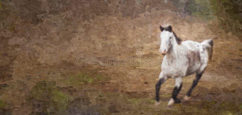 Γκρίζα φοράδα που τρέχει στο Badlands στοκ φωτογραφίες