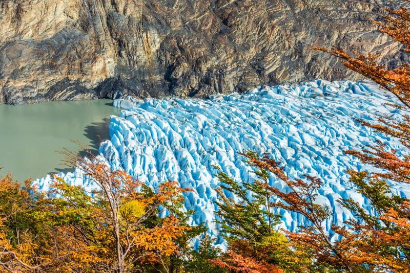 Γκρίζος παγετώνας, Παταγωνία, Χιλή, Patagonian τομέας πάγου, Cordillera del Paine στοκ εικόνες με δικαίωμα ελεύθερης χρήσης
