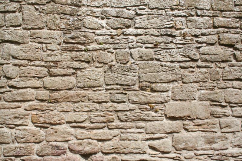 γκρίζος παλαιός τοίχος π&e στοκ φωτογραφίες