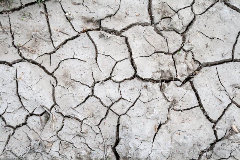 Γκρίζο έδαφος που ραγίζεται κατά τη διάρκεια της ξηρασίας με μια ξηρά χλόη μικρού ποσού στοκ φωτογραφίες με δικαίωμα ελεύθερης χρήσης