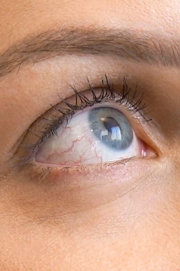 Γκρίζο μάτι μιας γυναίκας στοκ φωτογραφία με δικαίωμα ελεύθερης χρήσης