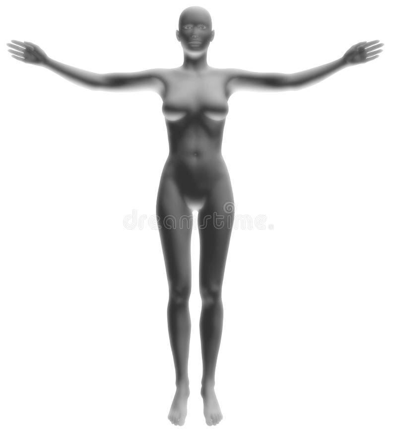 γκρίζο μοντέλο 4 διανυσματική απεικόνιση