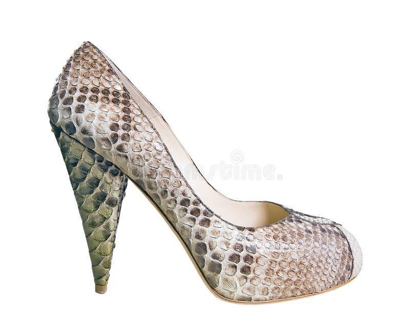 γκρίζο παπούτσι στοκ εικόνα με δικαίωμα ελεύθερης χρήσης