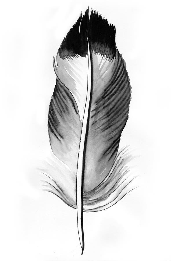 Γκρίζο φτερό διανυσματική απεικόνιση