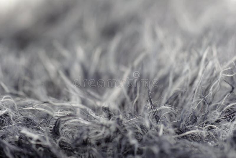 Download γκρι γουνών στοκ εικόνες. εικόνα από μαντίλι, κουβέρτα - 525552