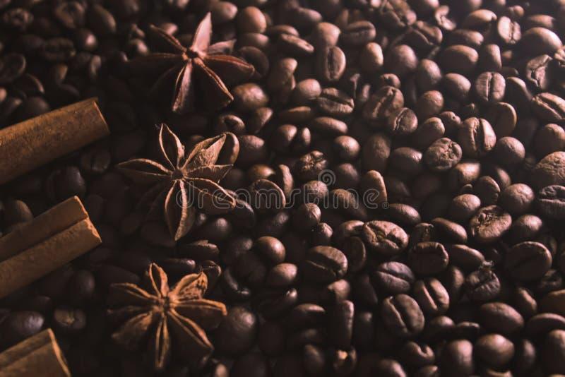 Γλυκάνισο αστεριών και φλοιός κανέλας στο υπόβαθρο των φασολιών καφέ στοκ εικόνες