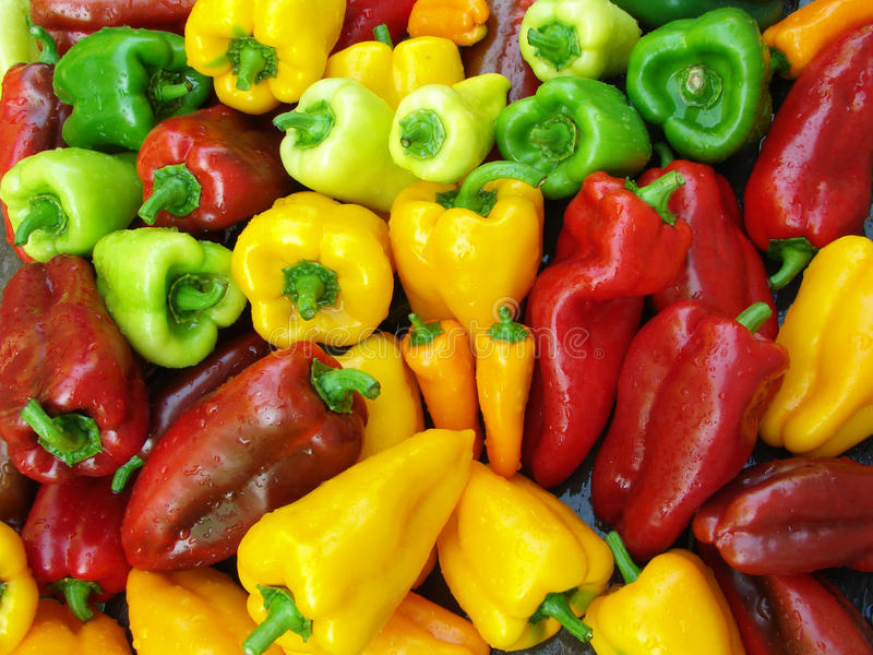 Γλυκά πιπέρια στοκ φωτογραφία