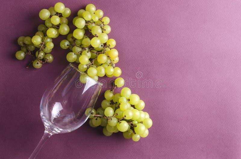 Γλυκά σταφύλια, glasswine στο ιώδες υπόβαθρο Τοπ άποψη των γυαλικών και των νόστιμων φρούτων στοκ εικόνες