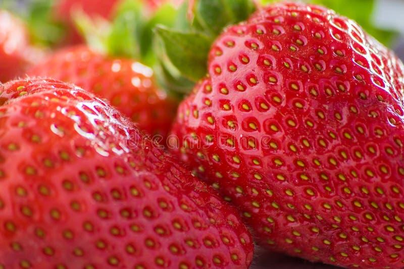 Γλυκές φράουλες στοκ φωτογραφίες με δικαίωμα ελεύθερης χρήσης