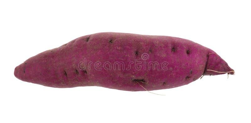 γλυκιά πατάτα που απομονώνεται πέρα από το άσπρο υπόβαθρο στοκ φωτογραφίες